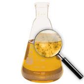 beaker of oil